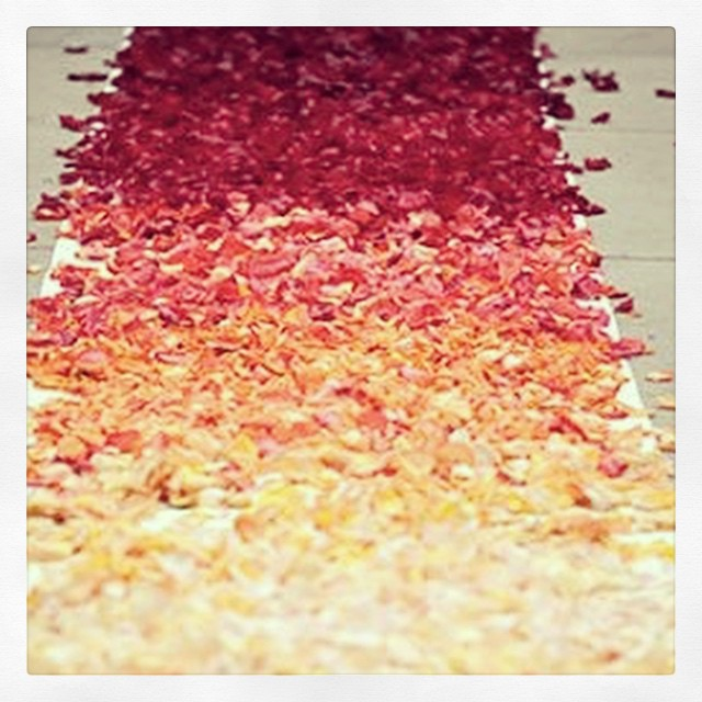 Romance is in the air @depo8prahran our boardroom hired for creative marriage proposal complete with a rose petal path #romance #creative #proposal #boardroom #prahran #melbourne